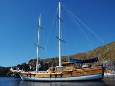 The schooner Pallas