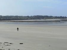 Guernsey – A walk on an eastern beach