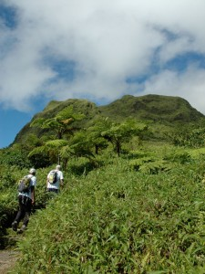 Hiking the Mount Pelée, Martinique