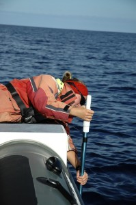 A biologist submerging the sonar to detect the sperm whales