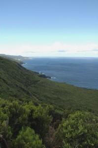 The wild Northeast coast