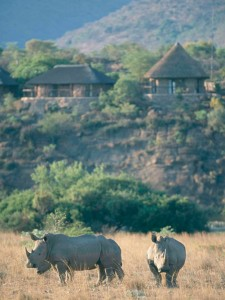 One of your lodges in South Africa