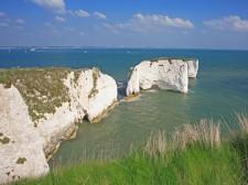 Handfast Point cliffs