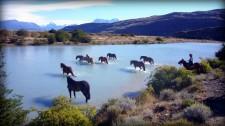 Horses crossing the Catarina river near Estancia Cristina (Argentina)