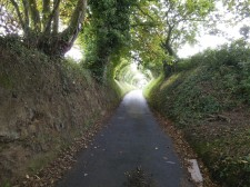 "Jersey – A ""Green Lane"", a little road to walk or bike"