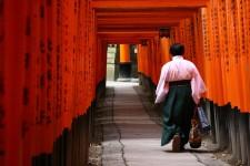 The famous red torii at Fushimi Inari Shinto Shrine, Kyoto