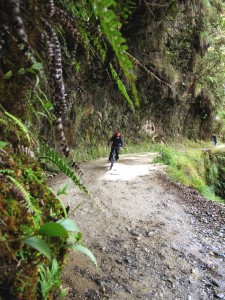"""Mountain Tropical Forest Extension– The """"death road"""" !"""