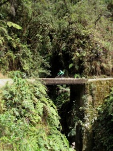 """Mountain Tropical Forest Extension– Full throttle down the """"death road"""" !"""