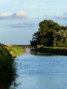 L'île est zébrée de canaux et d'étangs