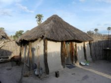 Traditional dwelling in a village in the Okavango Delta